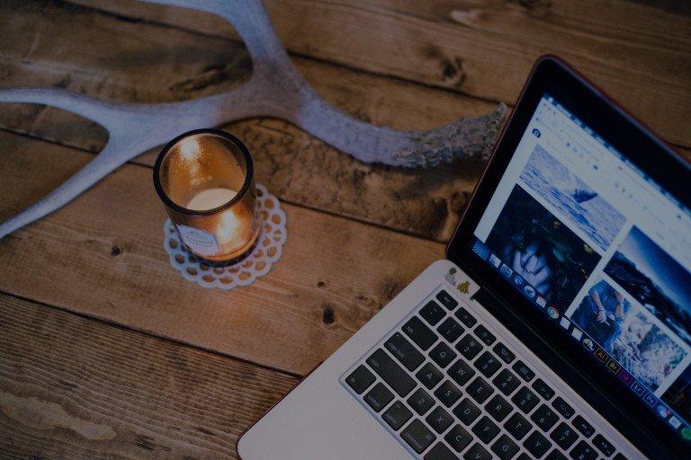 Web Development Social Bees Media